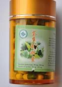 Zielona herbata ipolifenole